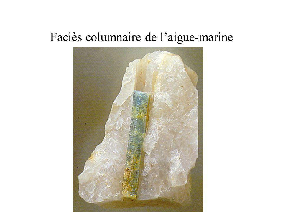 Faciès columnaire de laigue-marine