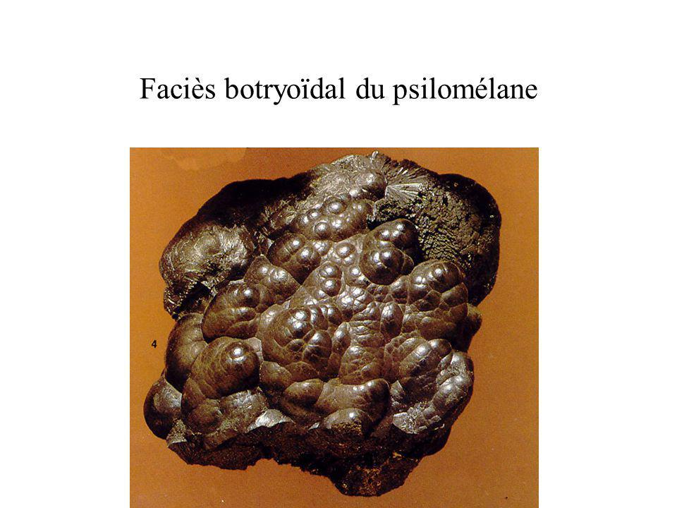 Faciès botryoïdal du psilomélane