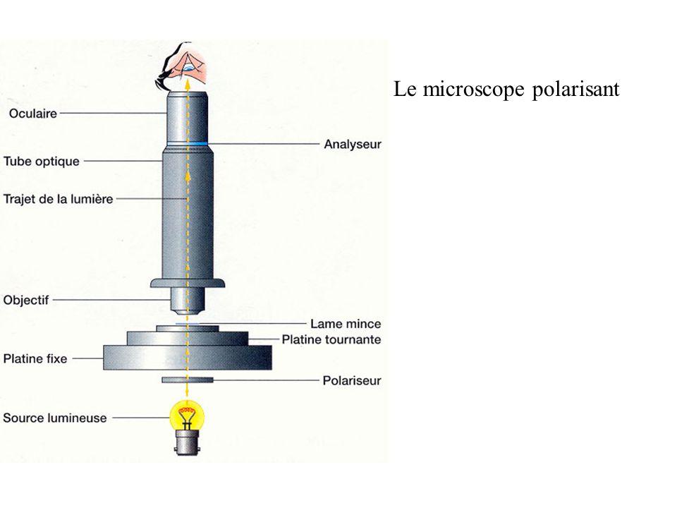 Pléiochroïsme de la biotite