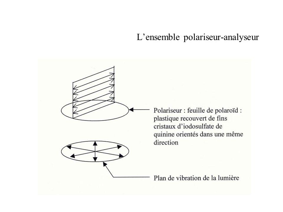 Superposition des polaroïds