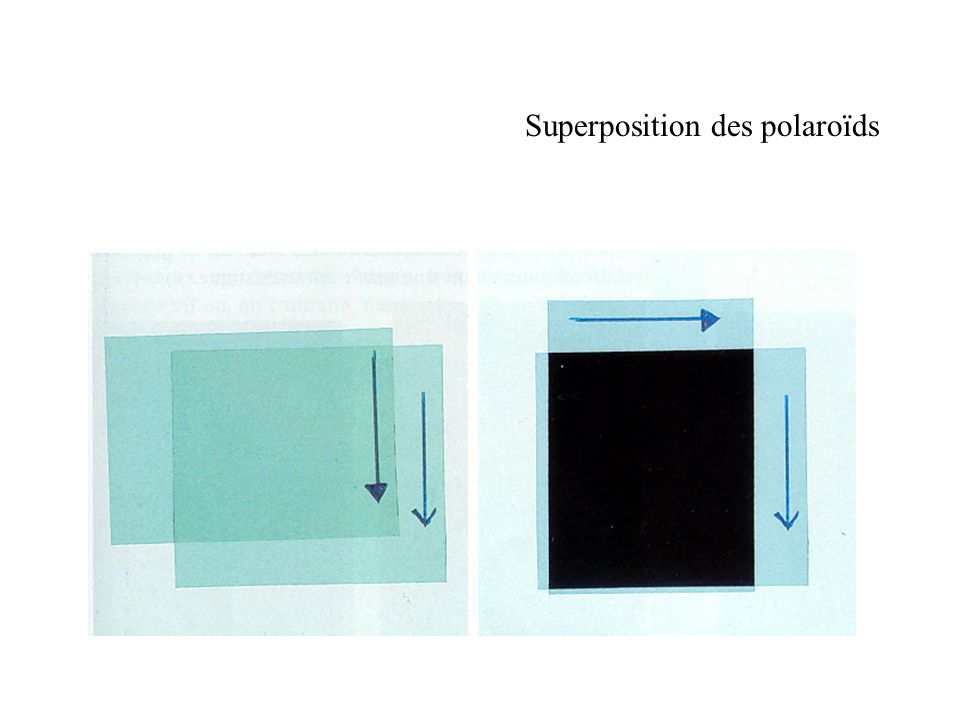 Superposition des polaroïds