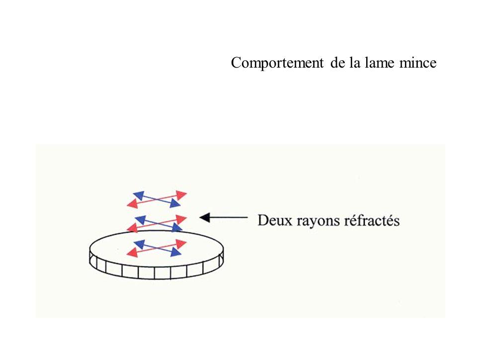 Lensemble polariseur-lame mince-analyseur