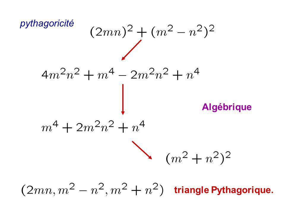 triangle Pythagorique. pythagoricité Algébrique