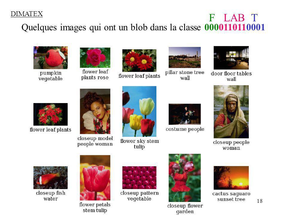 18 Quelques images qui ont un blob dans la classe 0000110110001 F LAB T DIMATEX