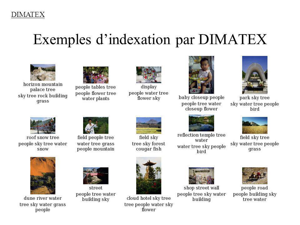 24 Exemples dindexation par DIMATEX DIMATEX