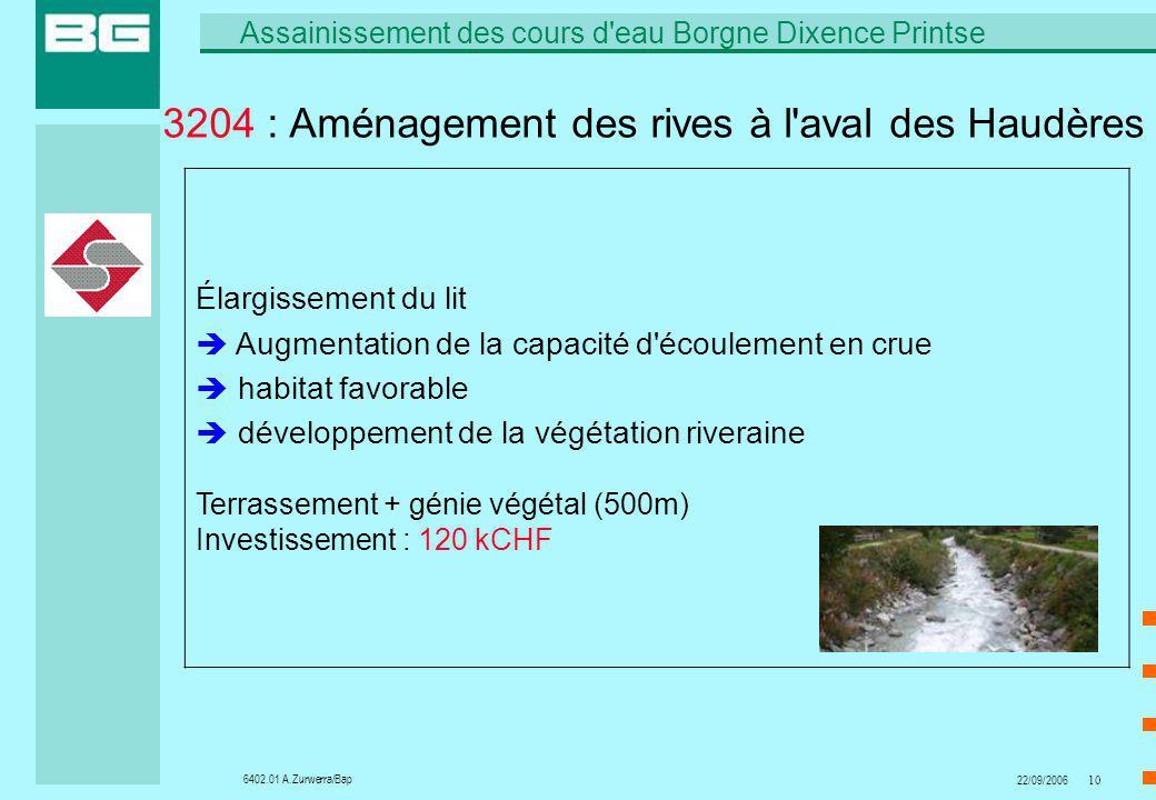 6402.01 A.Zurwerra/Bap Assainissement des cours d'eau Borgne Dixence Printse 22/09/200610 3204 : Aménagement des rives à l'aval des Haudères Élargisse