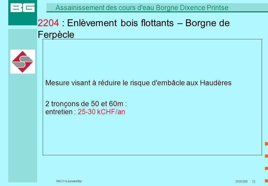 6402.01 A.Zurwerra/Bap Assainissement des cours d'eau Borgne Dixence Printse 22/09/200612 2204 : Enlèvement bois flottants – Borgne de Ferpècle Mesure