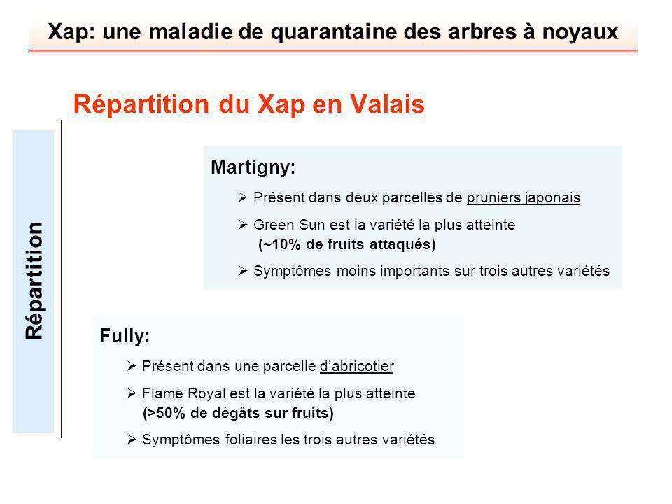 Xap: une maladie de quarantaine des arbres à noyaux Martigny: Présent dans deux parcelles de pruniers japonais Green Sun est la variété la plus attein