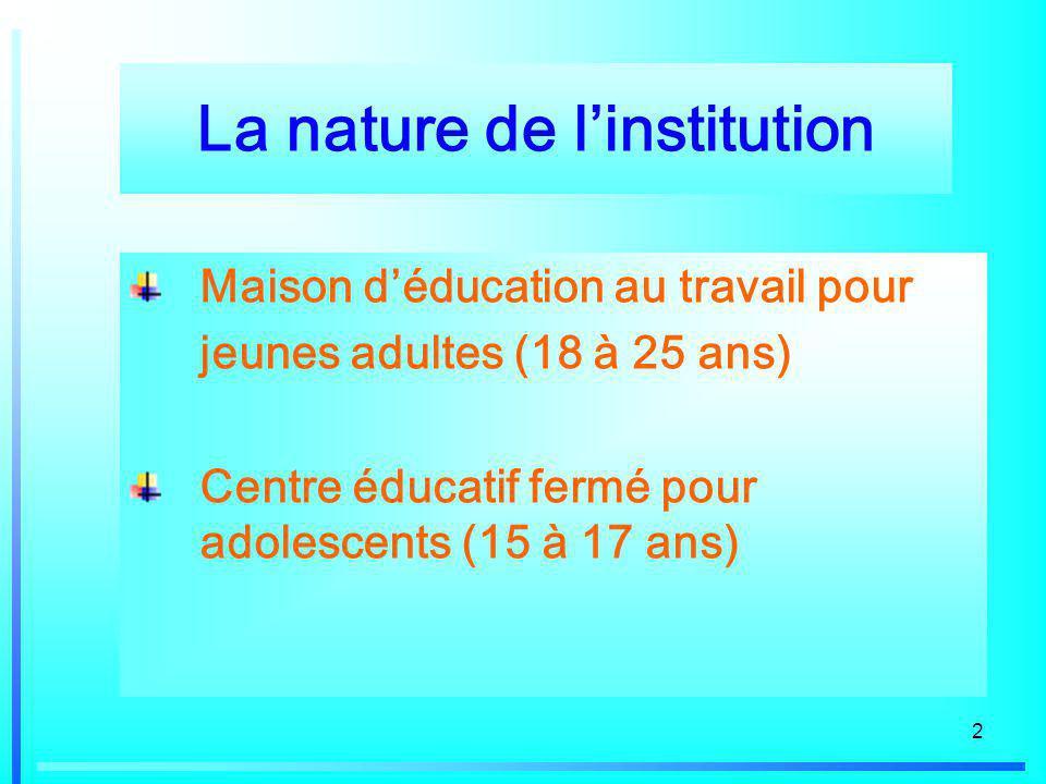 2 La nature de linstitution Maison déducation au travail pour jeunes adultes (18 à 25 ans) Centre éducatif fermé pour adolescents (15 à 17 ans)