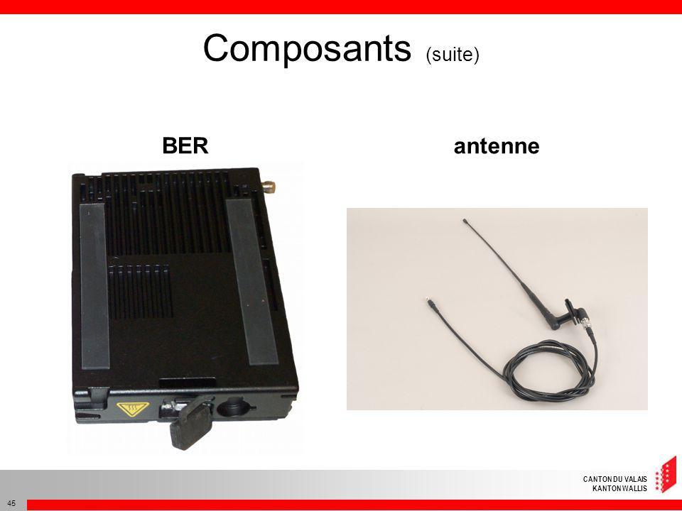 CANTON DU VALAIS KANTON WALLIS 45 Composants (suite) BERantenne