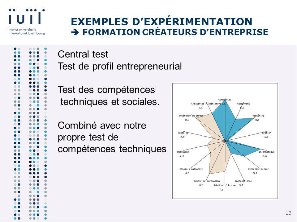 13 EXEMPLES DEXPÉRIMENTATION FORMATION CRÉATEURS DENTREPRISE Central test Test de profil entrepreneurial Test des compétences techniques et sociales.