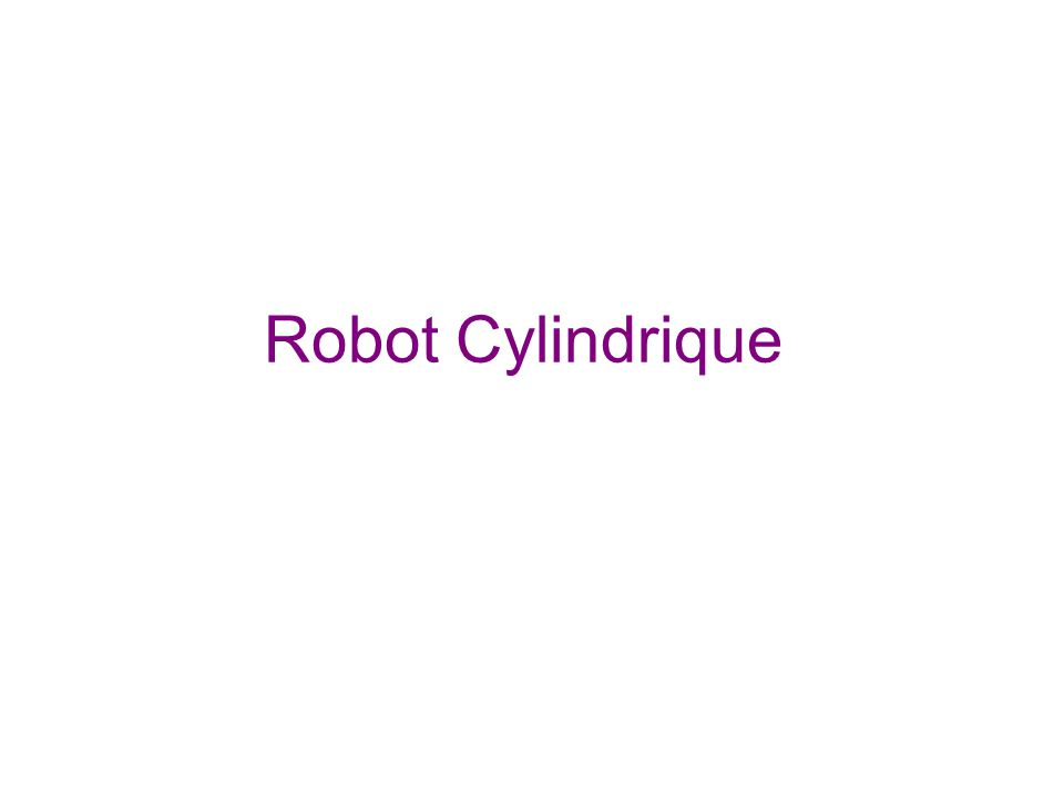 Robot Cylindrique