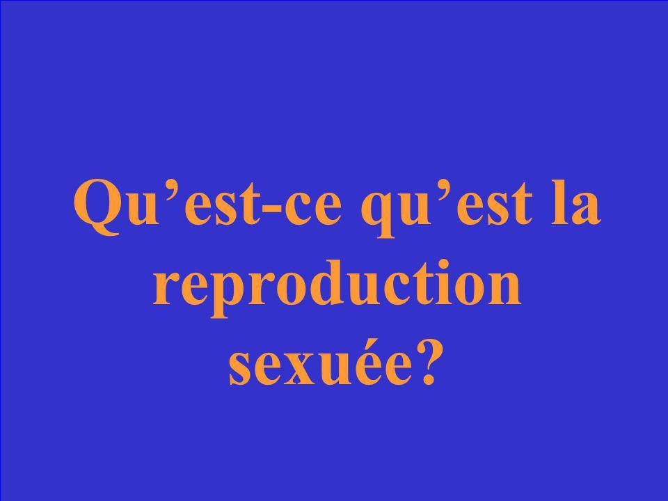 Est possible grâce à deux cellules sexuelles (une cellule mâle et une cellule femelle).