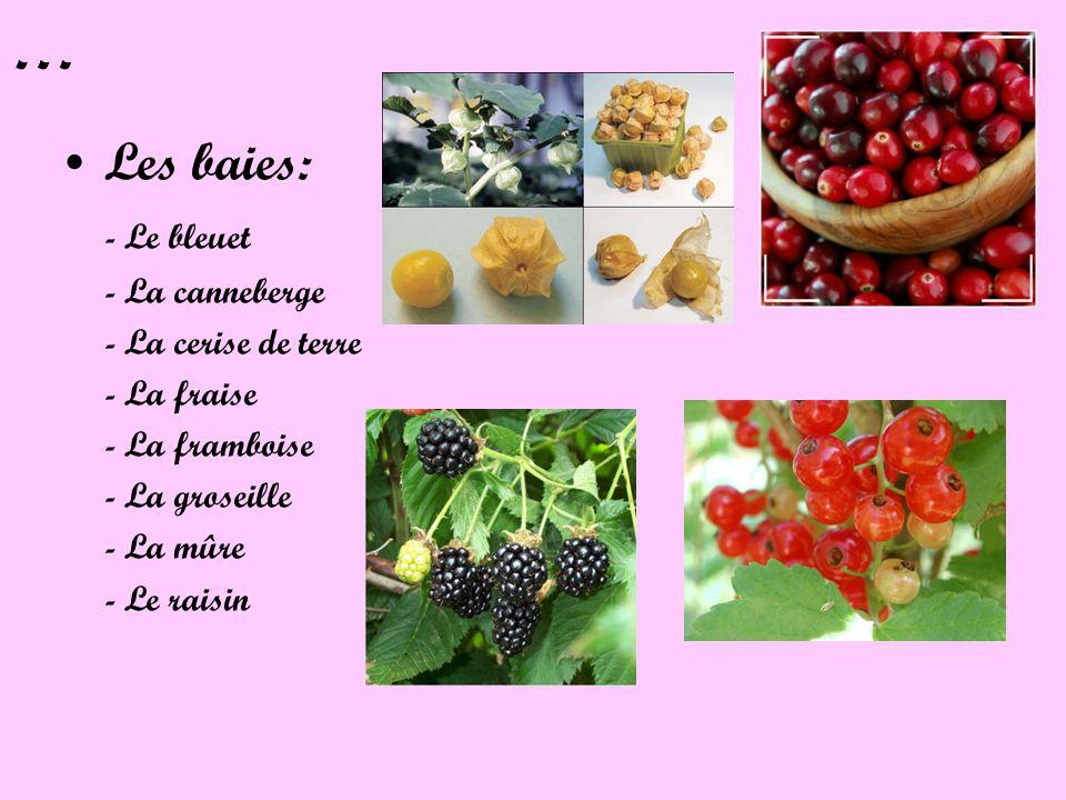 … Les baies: - Le bleuet - La canneberge - La cerise de terre - La fraise - La framboise - La groseille - La mûre - Le raisin