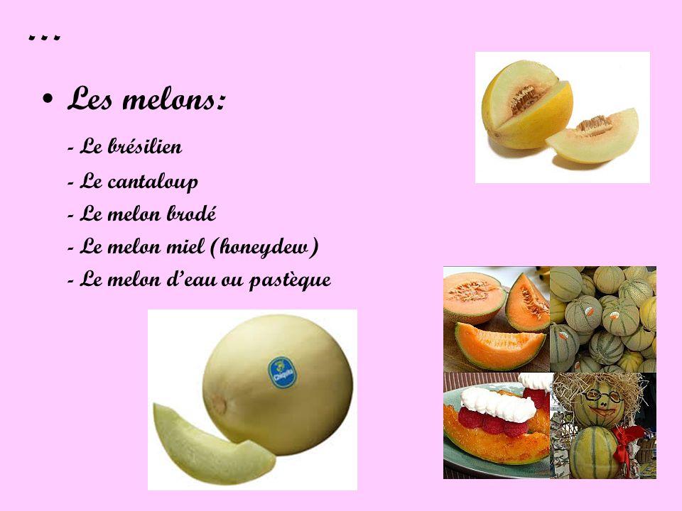 … Les melons: - Le brésilien - Le cantaloup - Le melon brodé - Le melon miel (honeydew) - Le melon deau ou pastèque