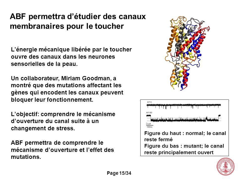 Page 15/34 ABF permettra détudier des canaux membranaires pour le toucher Lénergie mécanique libérée par le toucher ouvre des canaux dans les neurones