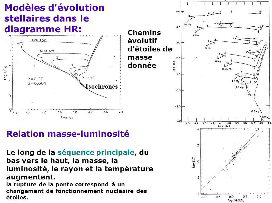 Modèles d'évolution stellaires dans le diagramme HR: Chemins évolutif d'étoiles de masse donnée Isochrones Relation masse-luminosité Le long de la séq