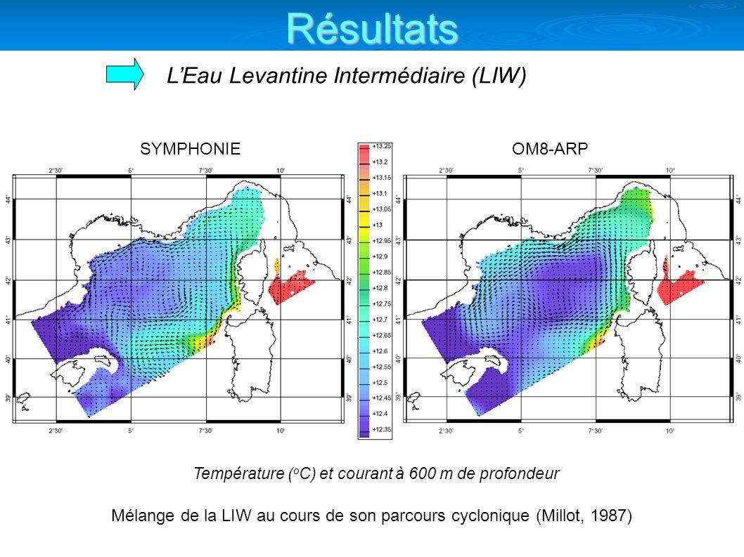 LEau Levantine Intermédiaire (LIW) SYMPHONIEOM8-ARP Température ( o C) et courant à 600 m de profondeur Mélange de la LIW au cours de son parcours cyc