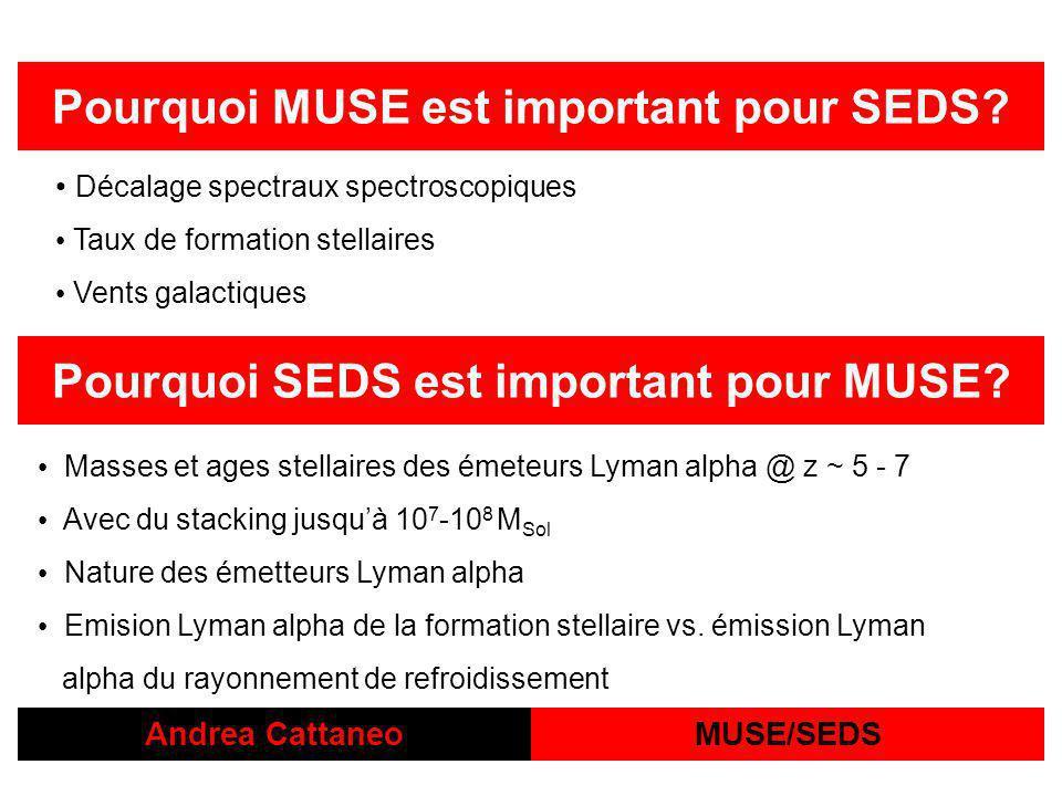 Andrea CattaneoMUSE/SEDS Pourquoi MUSE est important pour SEDS.