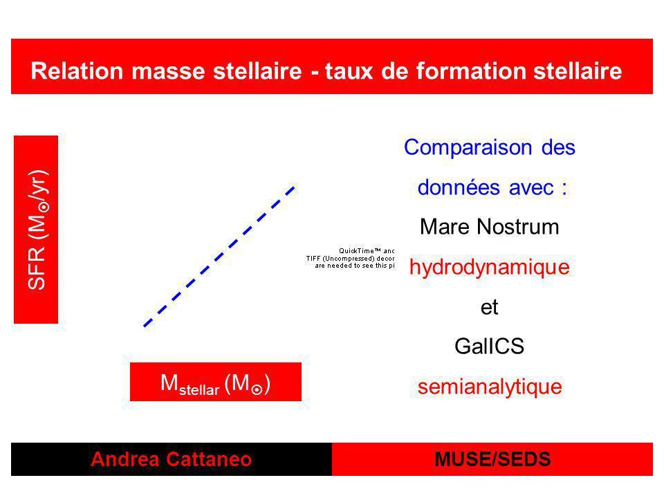 Andrea Cattaneo Relation masse stellaire - taux de formation stellaire MUSE/SEDS M stellar (M ) SFR (M /yr) Comparaison des données avec : Mare Nostrum hydrodynamique et GalICS semianalytique