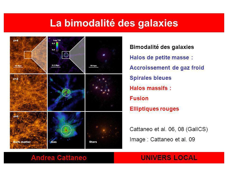Andrea CattaneoUNIVERS LOCAL La bimodalité des galaxies Bimodalité des galaxies Halos de petite masse : Accroissement de gaz froid Spirales bleues Halos massifs : Fusion Elliptiques rouges Cattaneo et al.