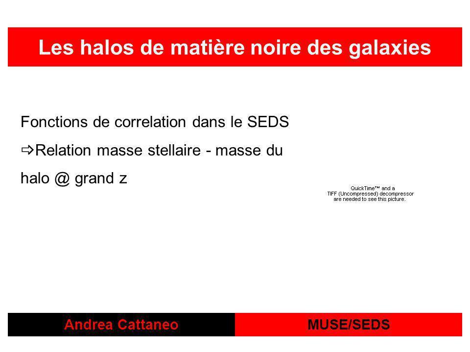 Andrea CattaneoMUSE/SEDS Les halos de matière noire des galaxies Fonctions de correlation dans le SEDS Relation masse stellaire - masse du halo @ grand z