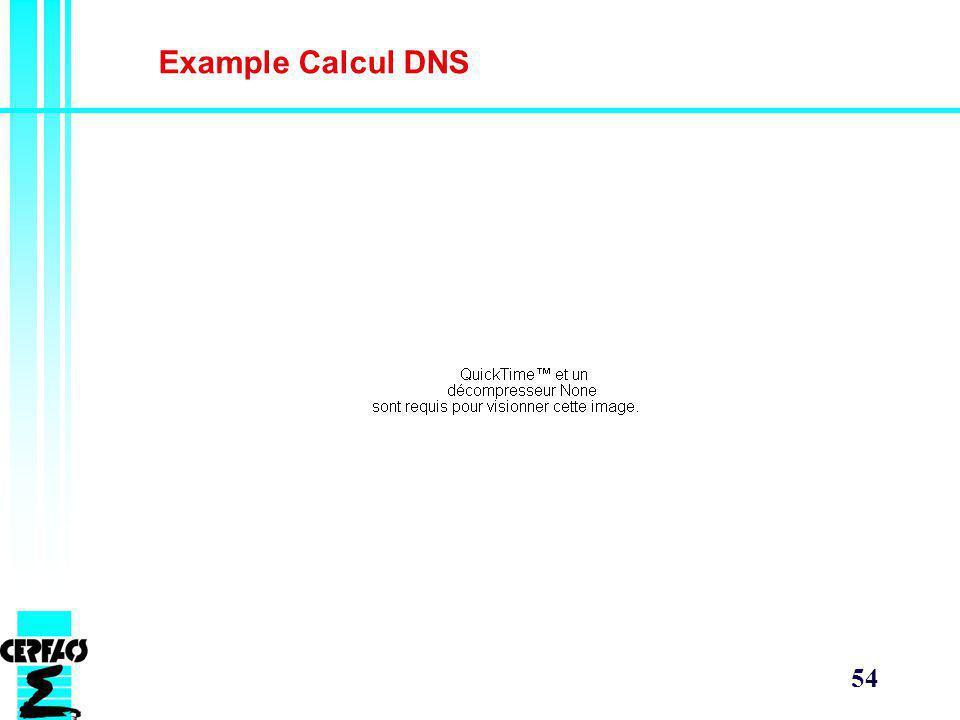 54 Example Calcul DNS