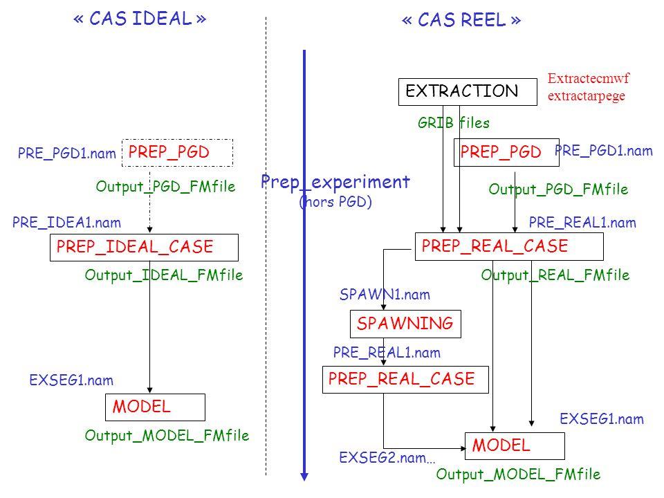 PREP_PGD PRE_PGD1.nam Output_PGD_FMfile PREP_IDEAL_CASE PRE_IDEA1.nam Output_IDEAL_FMfile MODEL EXSEG1.nam Output_MODEL_FMfile EXTRACTION Extractecmwf