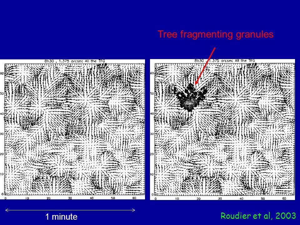 Roudier et al, 2003 1 minute Tree fragmenting granules