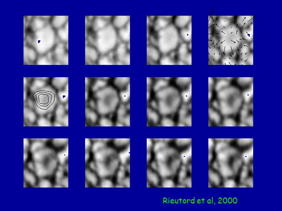 Rieutord et al, 2000