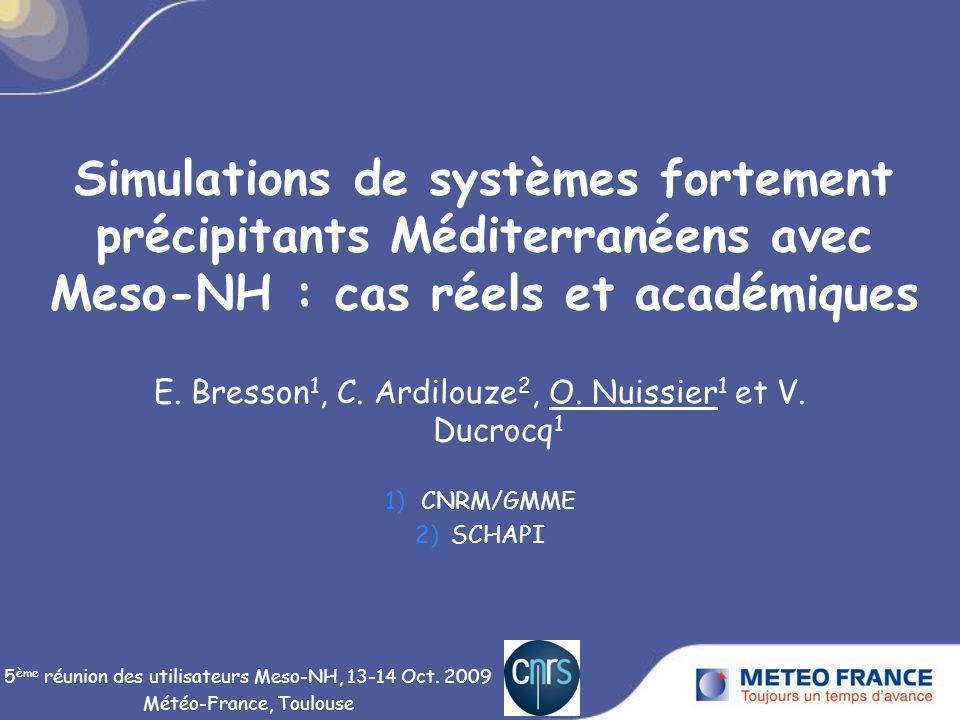 Simulations de systèmes fortement précipitants Méditerranéens avec Meso-NH : cas réels et académiques E.