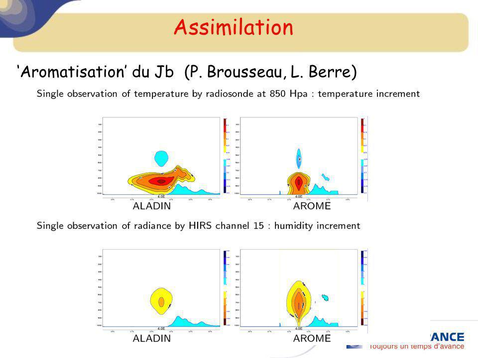 Assimilation Aromatisation du Jb (P. Brousseau, L. Berre)