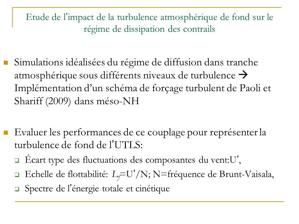 Deux domaines de simulation de 10m 3 avec une résolution de 10cm: sans stratification (SS) avec stratification (AS) N=0.013.s -1 3 composantes du vent forcées