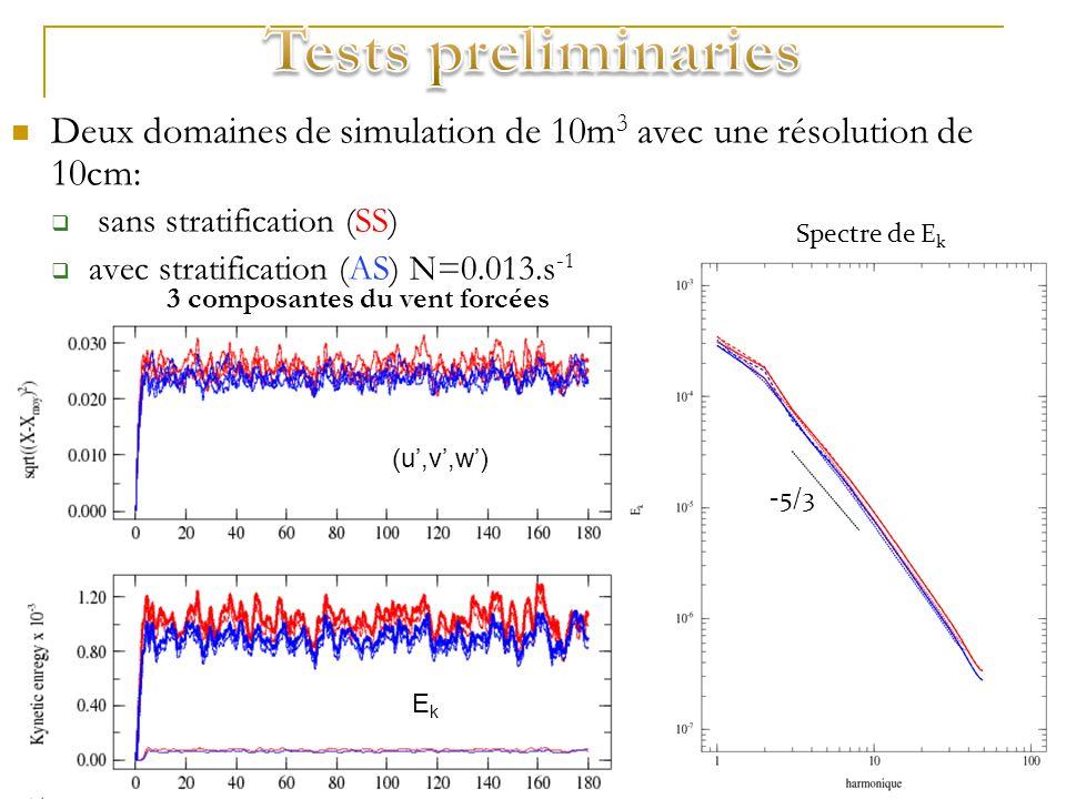 Deux domaines de simulation de 10m 3 avec une résolution de 10cm: sans stratification (SS) avec stratification (AS) N=0.013.s -1 -5/3 3 composantes du vent forcées Sans stratification: Turbulence isotrope ->Comportement attendu Avec stratification: Pas dimpact de la stratification à ces échelles -> Turbulence isotrope.