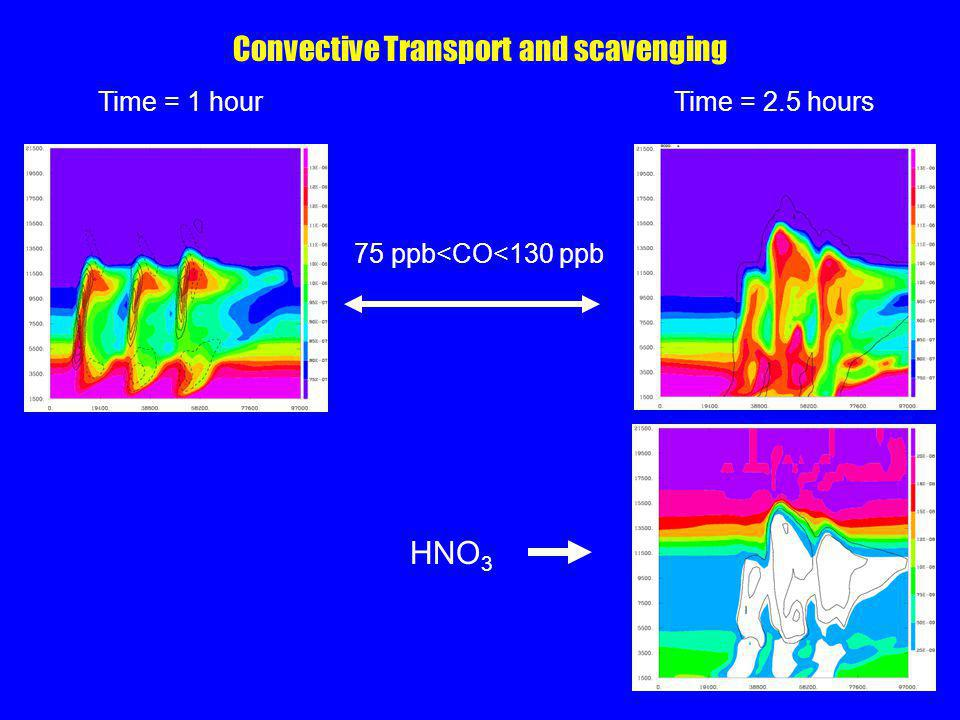 Convective Transport and scavenging 75 ppb<CO<130 ppb Time = 1 hourTime = 2.5 hours HNO 3
