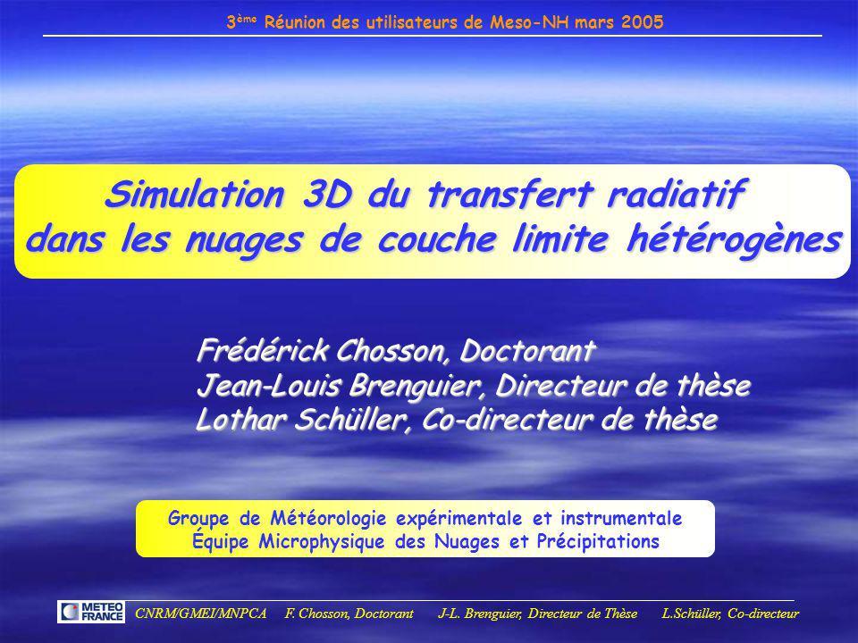 3 ème Réunion des utilisateurs de Meso-NH mars 2005 CNRM/GMEI/MNPCA F. Chosson, Doctorant J-L. Brenguier, Directeur de Thèse L.Schüller, Co-directeur
