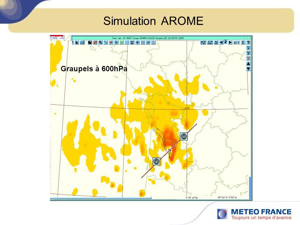 Simulation AROME Graupels à 600hPa