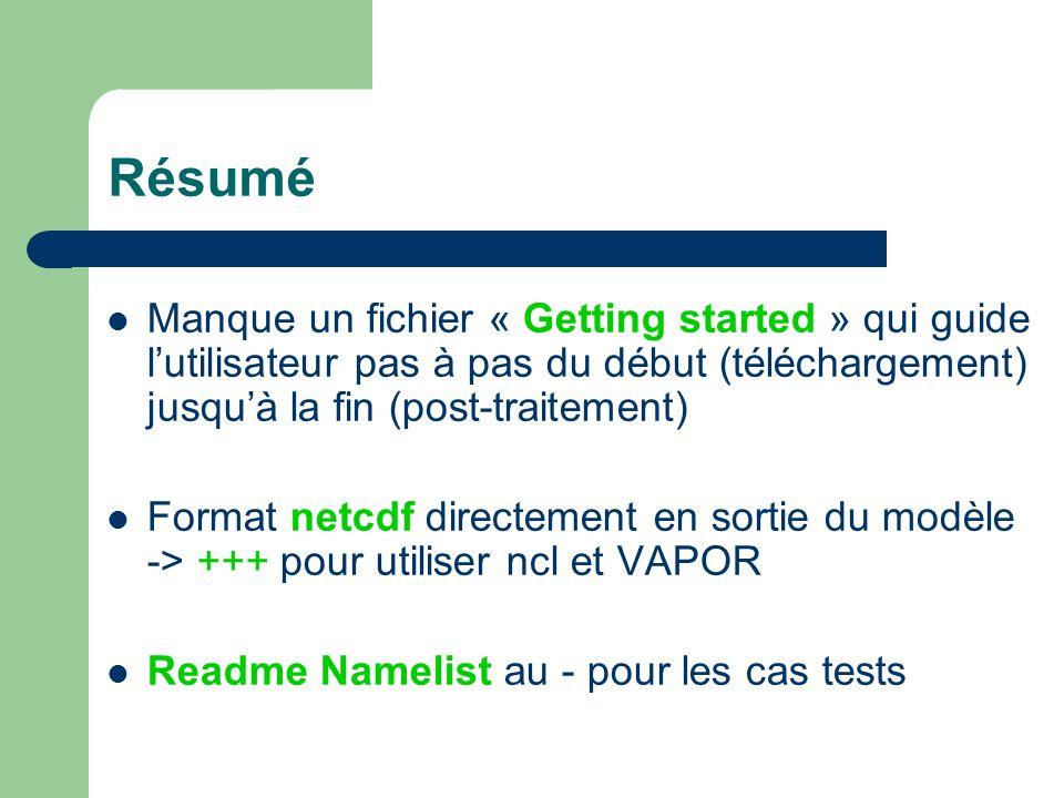 Résumé Manque un fichier « Getting started » qui guide lutilisateur pas à pas du début (téléchargement) jusquà la fin (post-traitement) Format netcdf