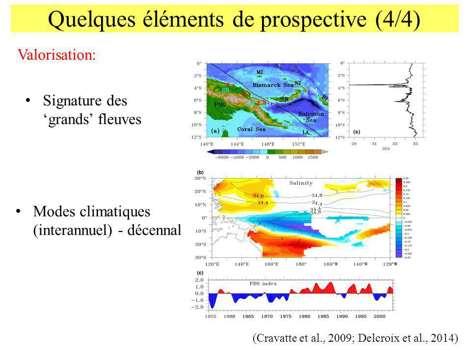 Quelques éléments de prospective (4/4) Signature des grands fleuves Modes climatiques (interannuel) - décennal Valorisation: (Cravatte et al., 2009; D