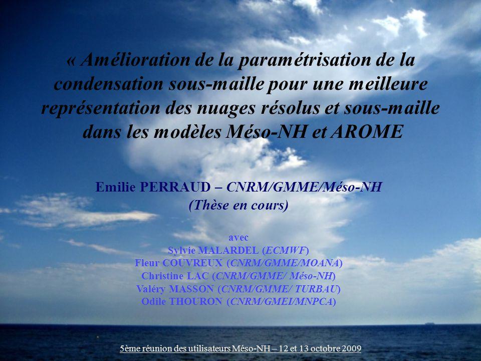 Introduction 5ème réunion des utilisateurs Méso-NH – 12 et 13 octobre 2009 Bonne représentation des nuages Condition de qualité pour tous les modèles numériques.