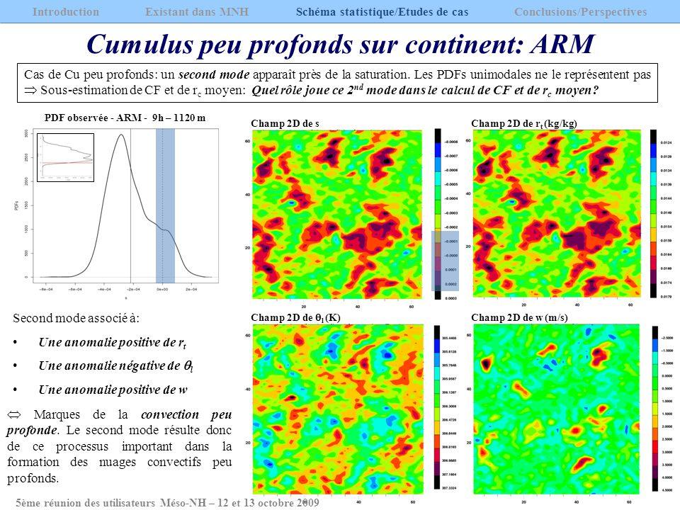 Cumulus peu profonds sur continent: ARM Cas de Cu peu profonds: un second mode apparaît près de la saturation. Les PDFs unimodales ne le représentent