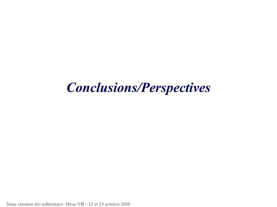 Conclusions/Perspectives 5ème réunion des utilisateurs Méso-NH – 12 et 13 octobre 2009