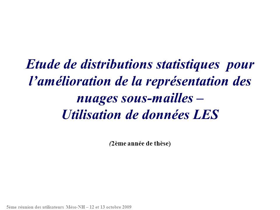Etude de distributions statistiques pour lamélioration de la représentation des nuages sous-mailles – Utilisation de données LES (2ème année de thèse)