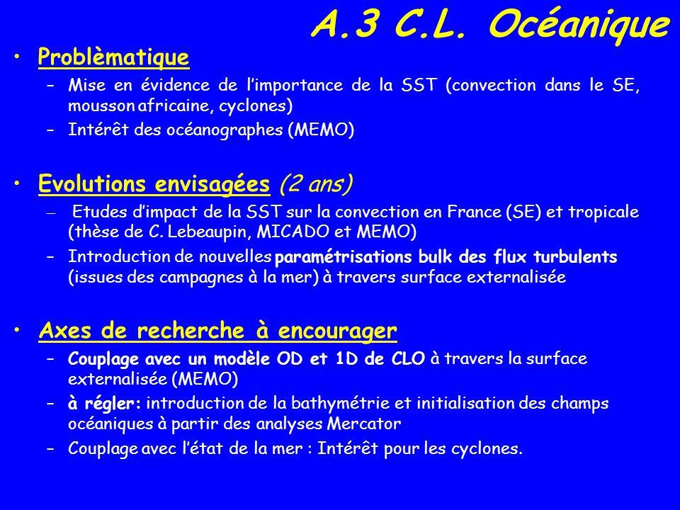 A.4 Surface Evolution (depuis 2 ans) –Surface externalisée incluant TEB, ISBA, OCEAN et ECOCLIMAP (dici 2006 dans tous les modèles de MF + mode off-line) –Flux de CO2 (Isba-A-gs) Faiblesses identifiées - documentation insuffisante - certaines options (diffusion dans le sol, CO2) peu testées en 3D - Température des lacs (modèle de lac?).