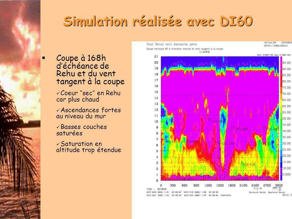 Bilan de la simulation DI60 Des résultats prometteurs Intensification dune tempête tropicale modérée Structure réaliste Des interrogations ΔT petit sinon problème dans la convection Problème de discontinuité de vent dans le bogus Phase de latence assez longue (60h) Génèse dassymétrie dans un problème symétrique -> suivi du cyclone Représentation en altitude?