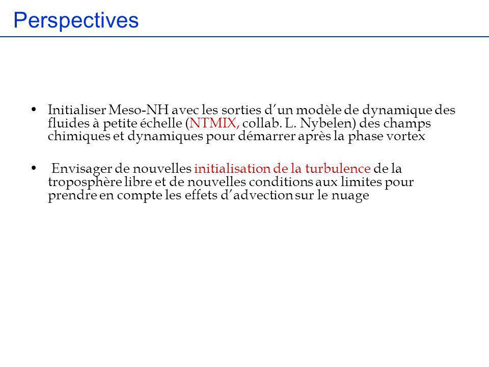 Perspectives Initialiser Meso-NH avec les sorties dun modèle de dynamique des fluides à petite échelle (NTMIX, collab. L. Nybelen) des champs chimique