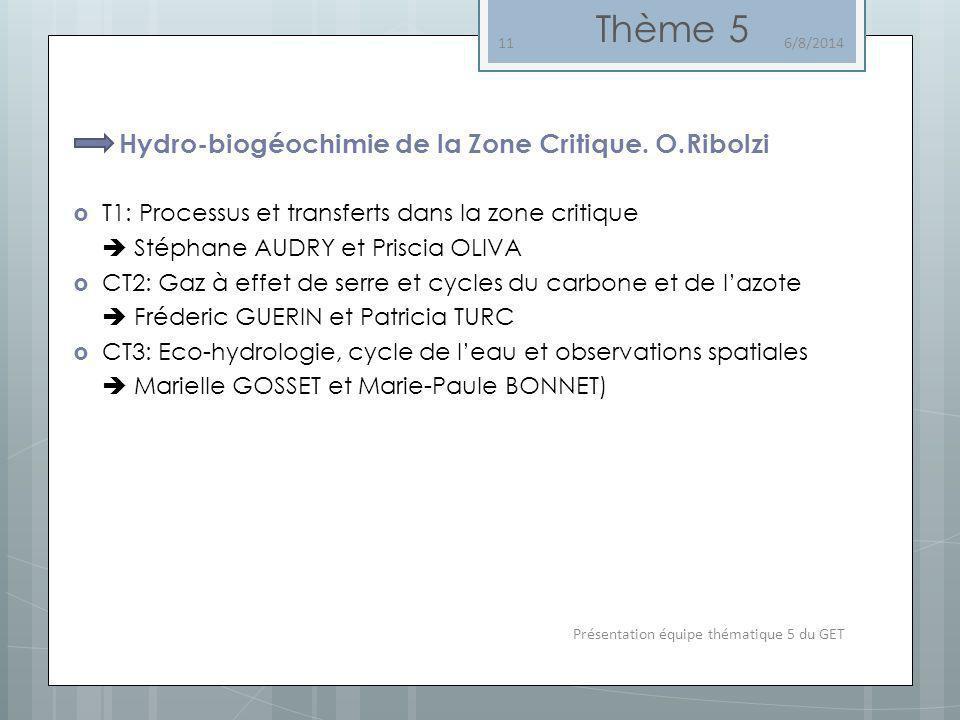 Hydro-biogéochimie de la Zone Critique. O.Ribolzi T1: Processus et transferts dans la zone critique Stéphane AUDRY et Priscia OLIVA CT2: Gaz à effet d