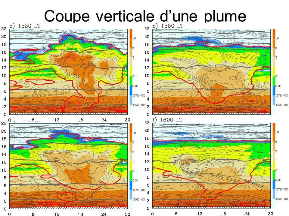 Modèle 4 ( Δx=625 m ) Coupe verticale dune plume Ligne rouge : nuage Couleur: eau totale