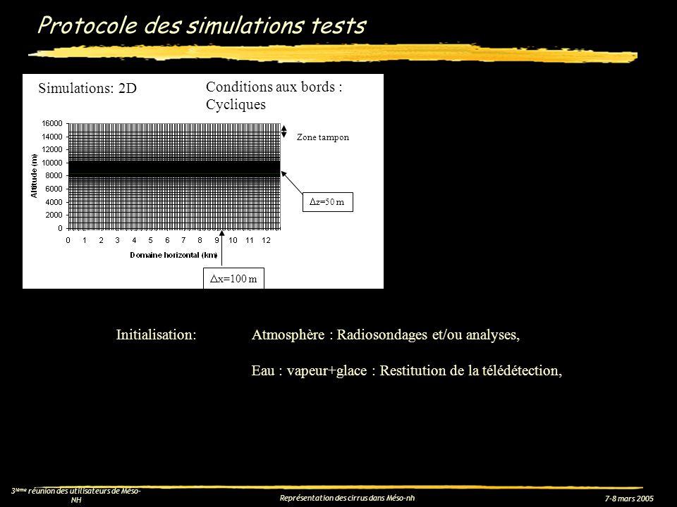 7-8 mars 2005 3 ième réunion des utilisateurs de Méso- NH Représentation des cirrus dans Méso-nh Protocole des simulations tests z=50 m Zone tampon Co