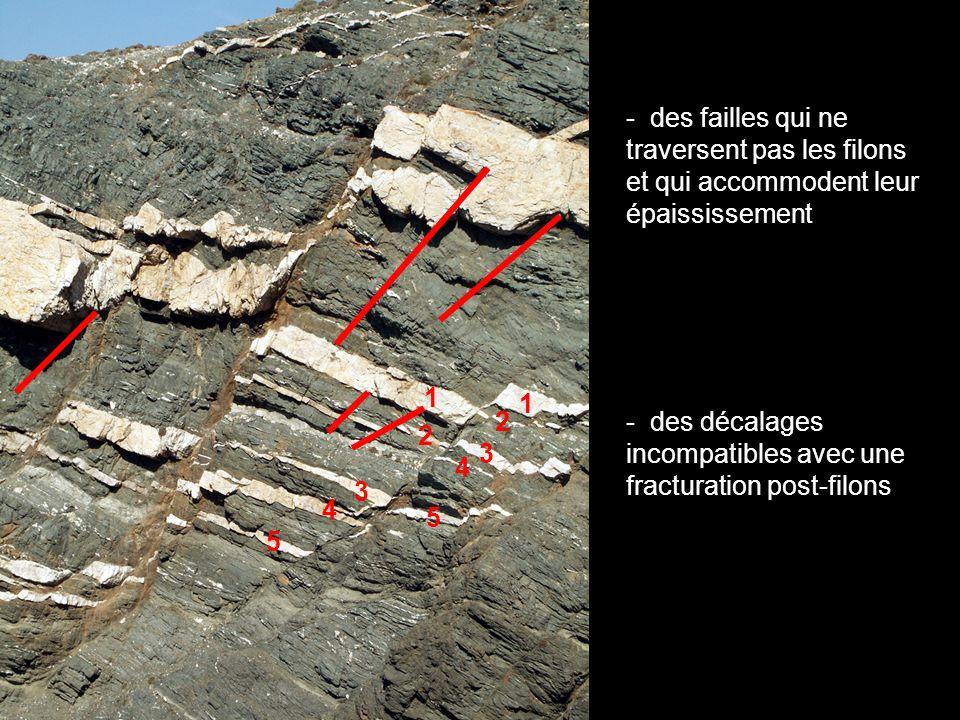 affleurement de Livada, île de Tinos, Cyclades 10m magmatisme syntectonique .